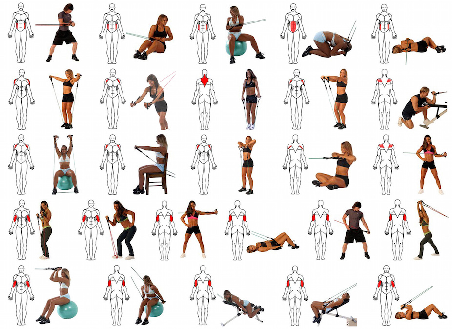 Suspension Trainer Workouts – Berry Blog